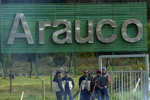 Juzgado Civil de Cañete ordenó a bosques Arauco, la restitución de 97 hectáreas a una comunidad indígena